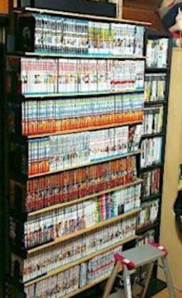 ラブリコでDIYした本棚に並べた漫画の本