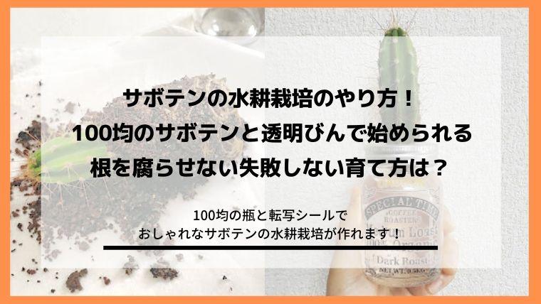 サボテンの水耕栽培のやり方!根を腐らせない失敗しない育て方のブログ記事のアイキャッチ画像